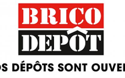 brico_depot_logo